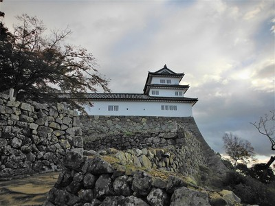 西の丸三重櫓(北側)