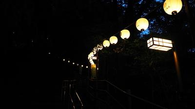 登城路を彩る提灯