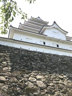 天守閣と野面積みの石垣