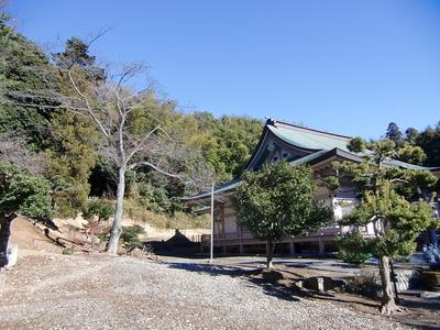 小山田城遠景(裏山が城址)