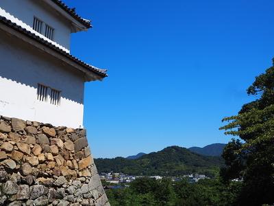 佐和山城を望む