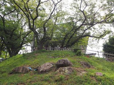 巨石石垣①