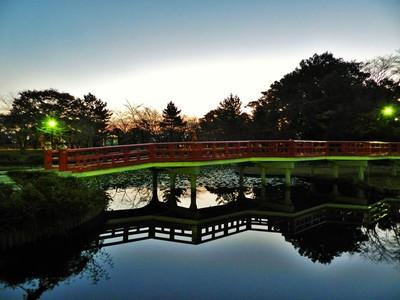 日の出を待つ岩槻城址公園