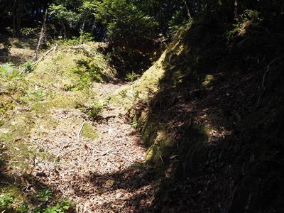 西側畝状竪堀⑤