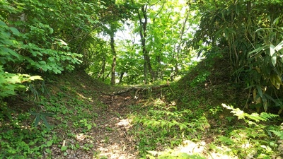 顕法寺城址④の看板の先にある空堀