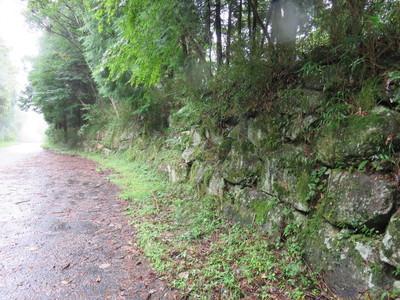 登城途中の石垣?