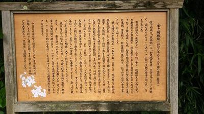 金ヶ崎城跡の説明板