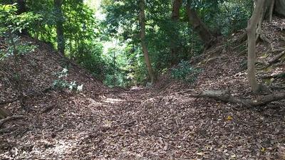 三の木戸跡にある竪堀