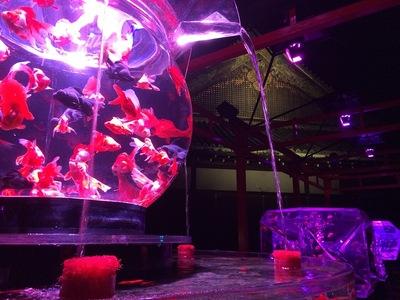 金魚鉢越しの二の丸御殿(アートアクアリウム)