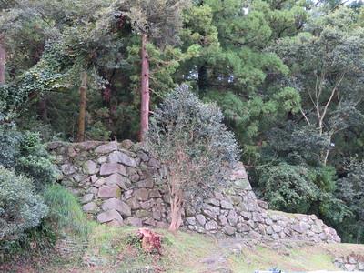 北側内堀跡(駐車場)付近の石垣