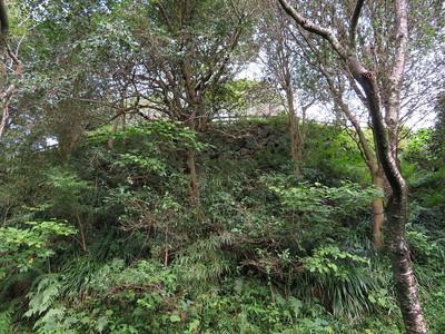 天守曲輪石垣(南側)