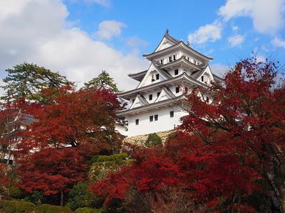 晴れた時のお城、紅葉とともに