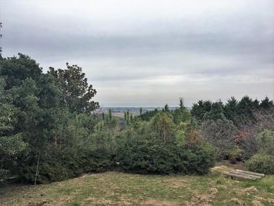 主郭から北側の眺め