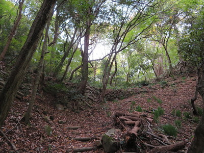 相畑城戸の石垣
