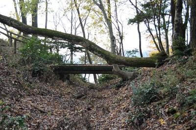 堀切に架かる遊歩道の橋