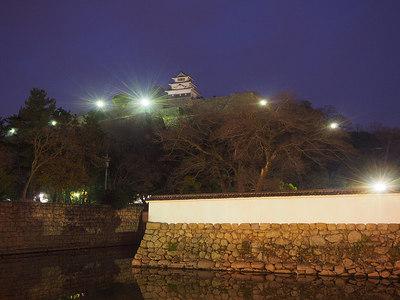 天守と堀と石垣と◆丸亀夜城