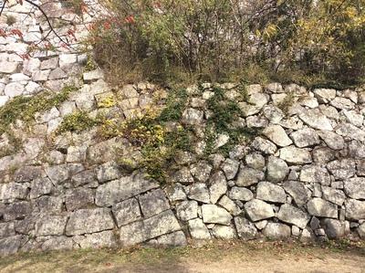 明石城本丸石垣の補強箇所