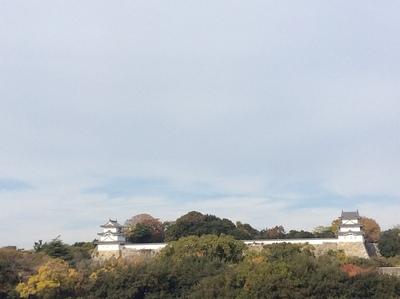駅から見た明石城