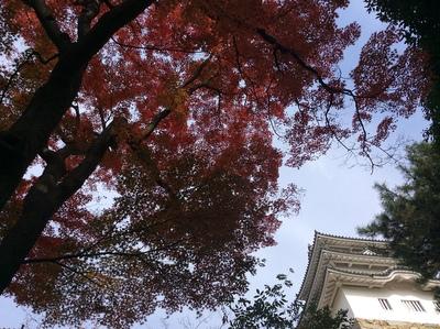 紅葉と明石城巽櫓