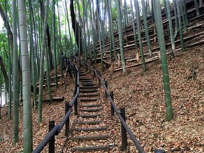 小机城 二の丸への階段