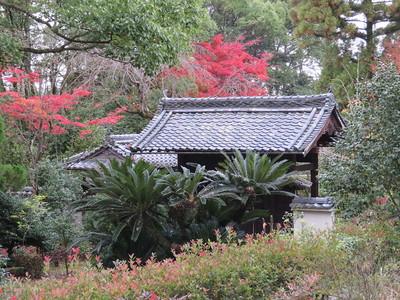 裏門(佛心寺桜門)