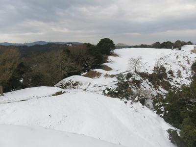 雪のいものがんき