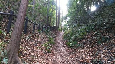天竺坂(空堀)を下側から見る