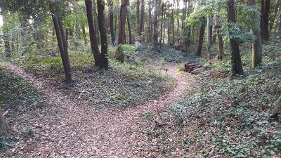 天竺坂に繋がる西側の空堀2
