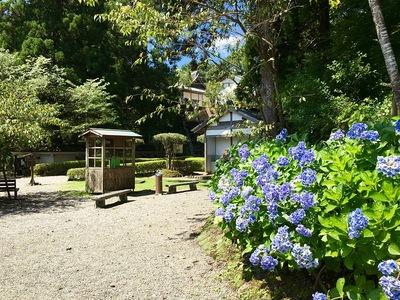松尾の丸への道