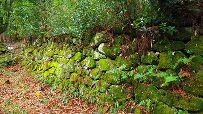 御蔵跡石垣(北面)
