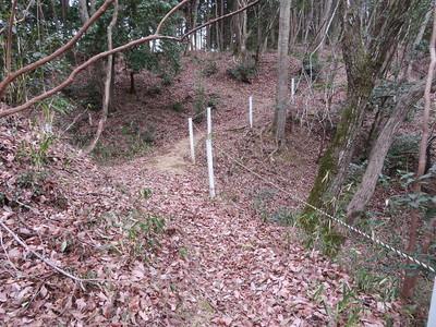 大堀切(箱掘)にかかる土橋(北側から)