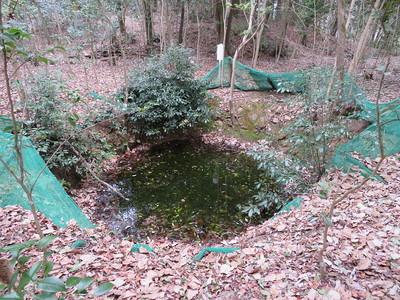 井戸曲輪の井戸