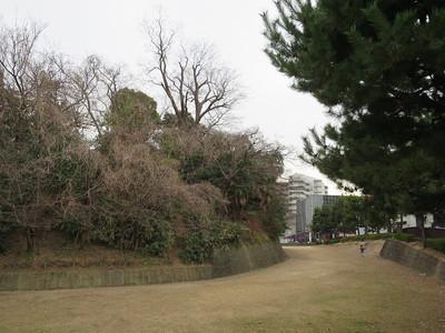 主郭と堀跡