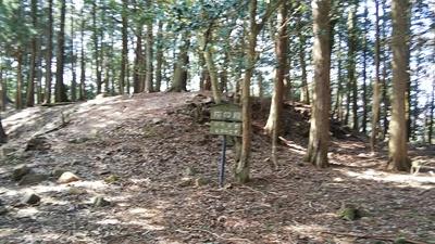 五龍城 桜の段