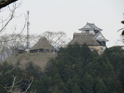 東側腰曲輪下段から茶臼山城