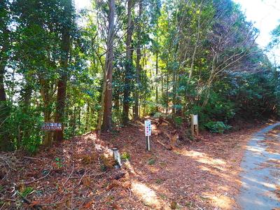 森の遺跡入り口(34.9205643,137.8602628)