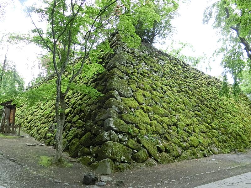 小諸城の写真:苔に覆われた石垣...