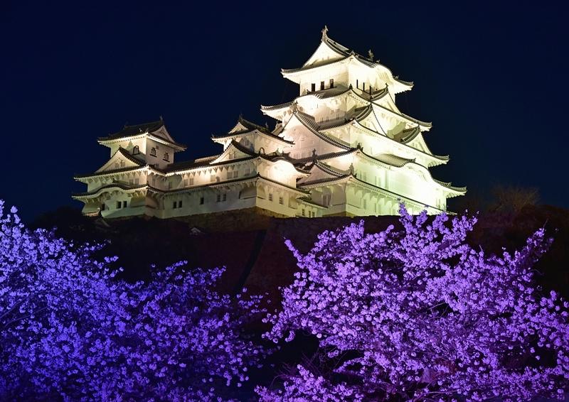 姫路城さくら祭りを楽しむ