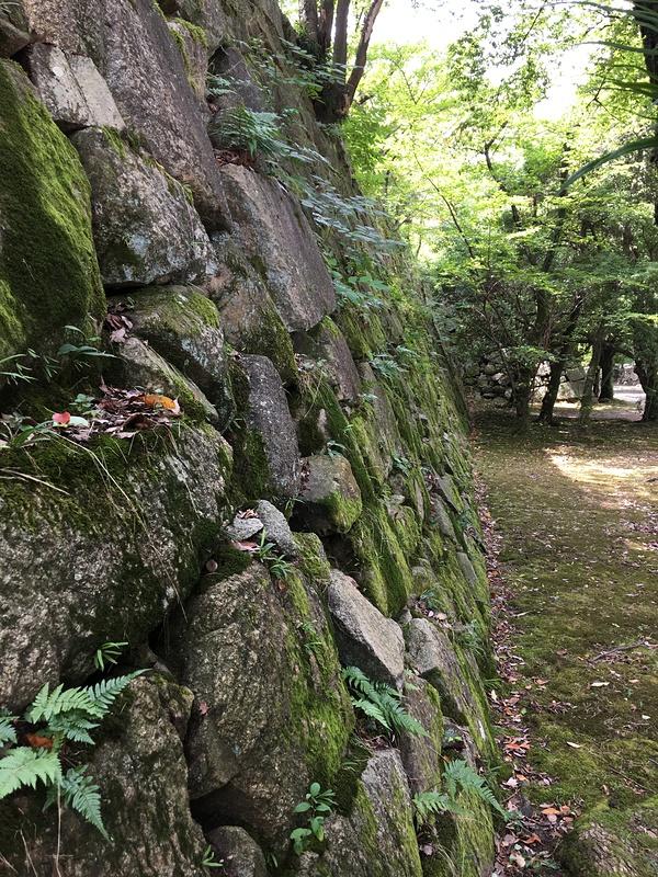 本丸石垣(北側)