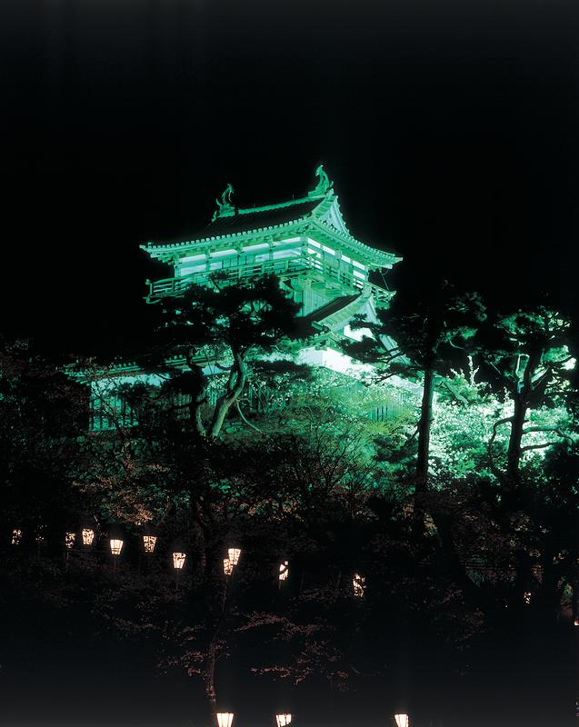 丸岡城天守(夜景)