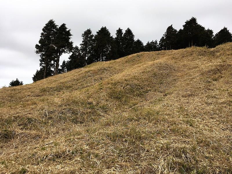 畝状竪堀群
