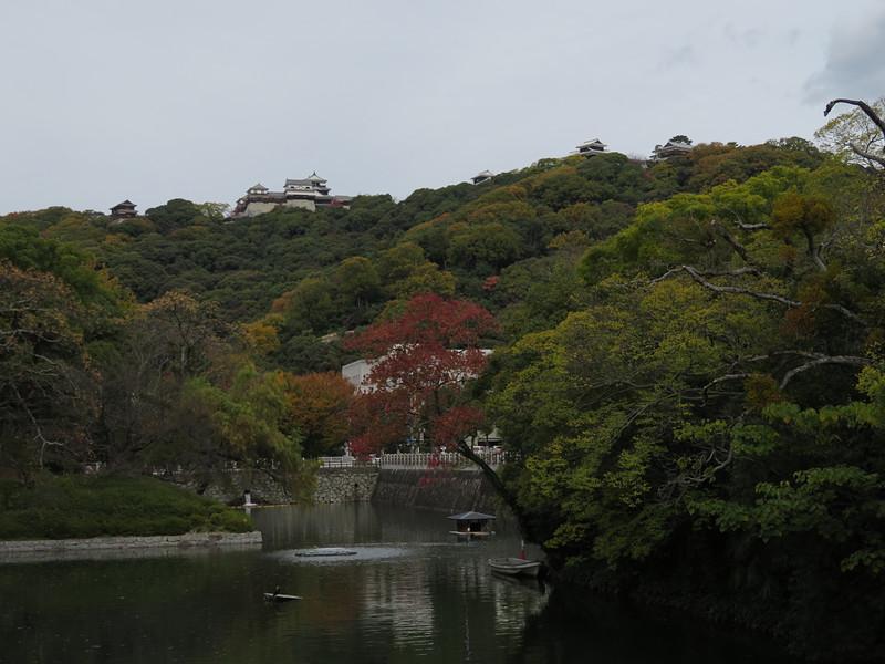 麓から本丸の天守・櫓群