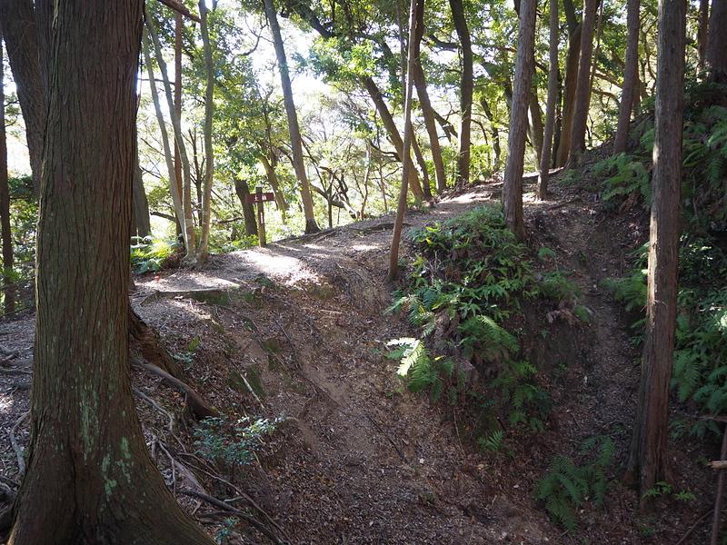 三ケ月掘端部からの土橋