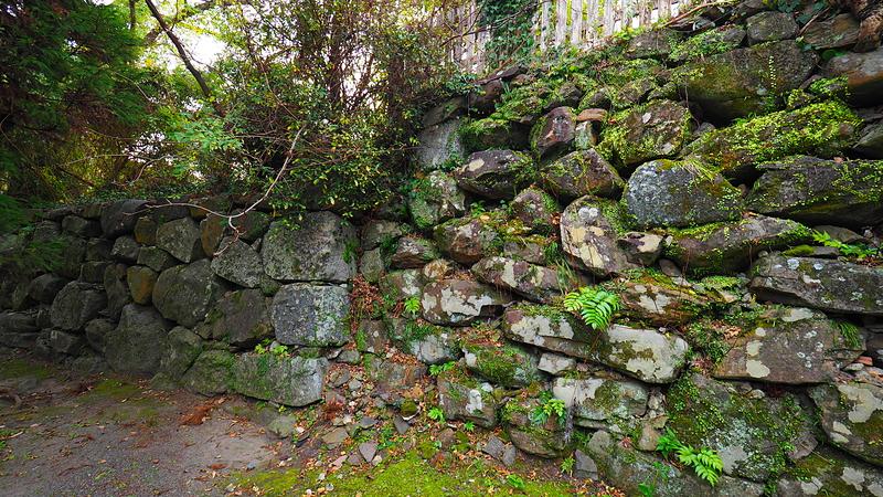 石垣(南丸)