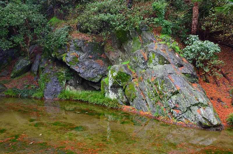 緑泥片岩の岩盤(城山 麓の東部)①