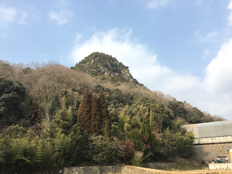全景[新高山城]