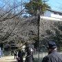 西角矢倉下の石垣