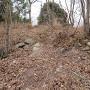 埋もれている石垣