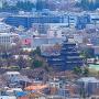 深志(松本)城を見る