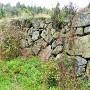 埋もれた石垣